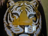 Nr 09. Tiger