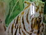 Nr 07. Tiger