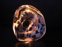 Nr 05. Ljushuvud vid schackbrädet